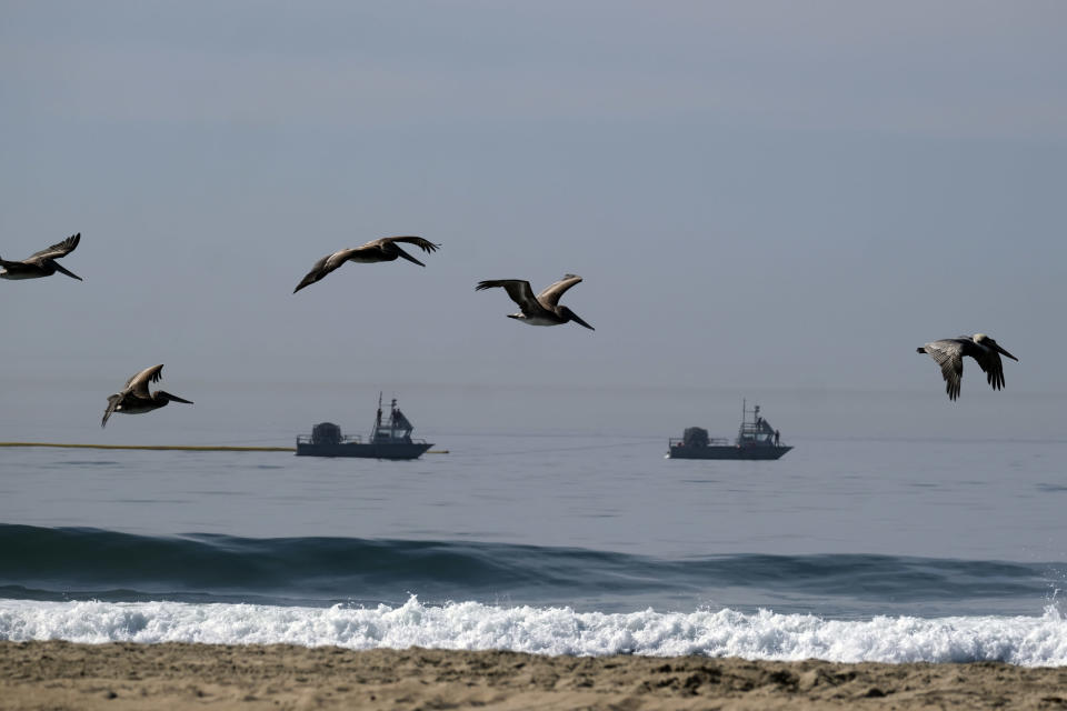 Pelicans fly over the beach after an oil spill in Huntington Beach, Calif., Sunday, Oct. 3, 2021. (AP Photo/Ringo H.W. Chiu)