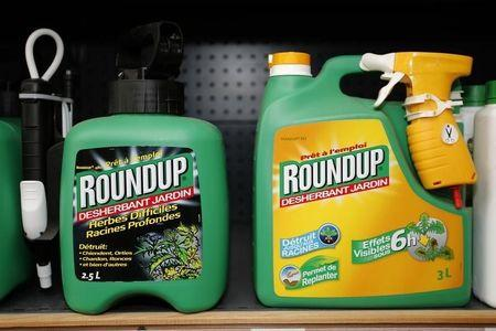 Monsanto's Roundup weedkiller atomizers are displayed for sale at a garden shop at Bonneuil-Sur-Marne near Paris