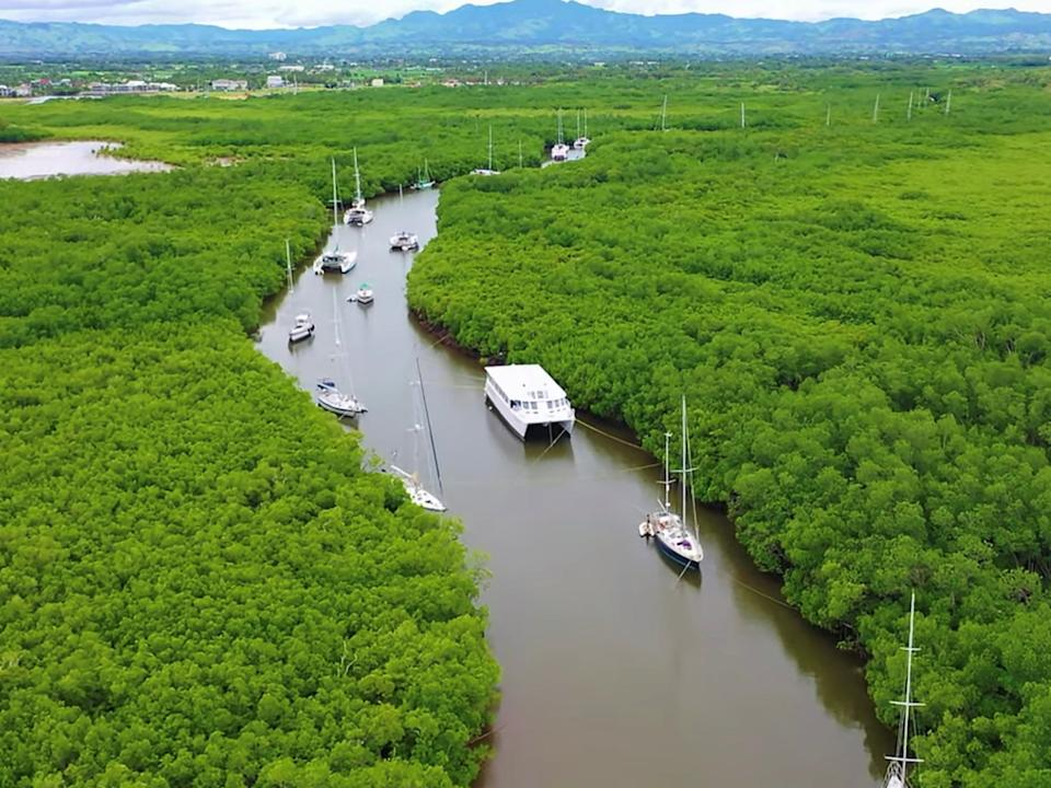 Boats sheltering in a mangrove-lined channel ahead of Cyclone Yasa in Fiji last month. Mangroves are an important nature-based solution that can help communities adapt to the impacts of the climate crisis (RICHARD MARSHALL via REUTERS)
