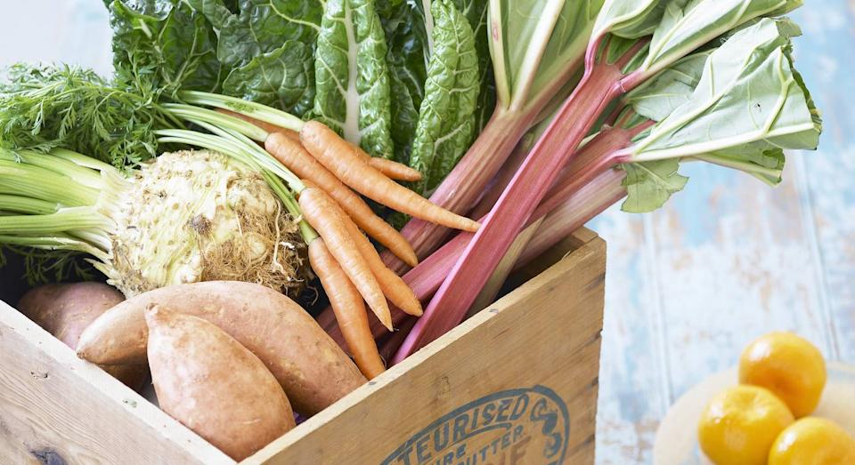 Large Vegetable Box (The Organic Delivery Co)