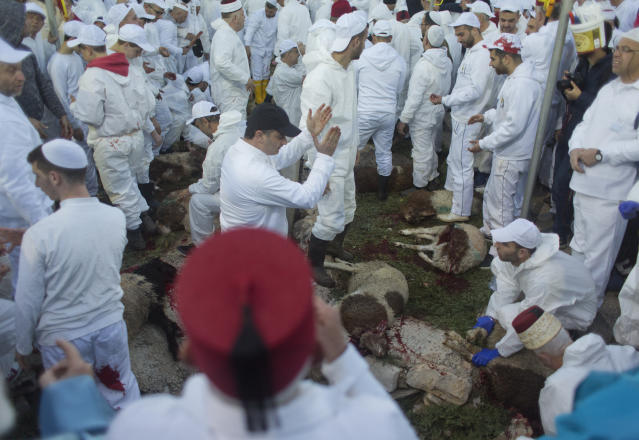 Members of the ancient Samaritan community participates in the ritual of Passover Sacrifice on Mount Gerizim, overlooking the West Bank town of Nablus, Thursday, April 18, 2019. Samaritans descended from the ancient Israelite tribes of Menashe and Efraim but broke away from mainstream Judaism 2,800 years ago. Today, the remaining 700 Samaritans live in the Palestinian city of Nablus in the West Bank and the Israeli seaside town of Holon, south of Tel Aviv. (AP Photo/Nasser Nasser)