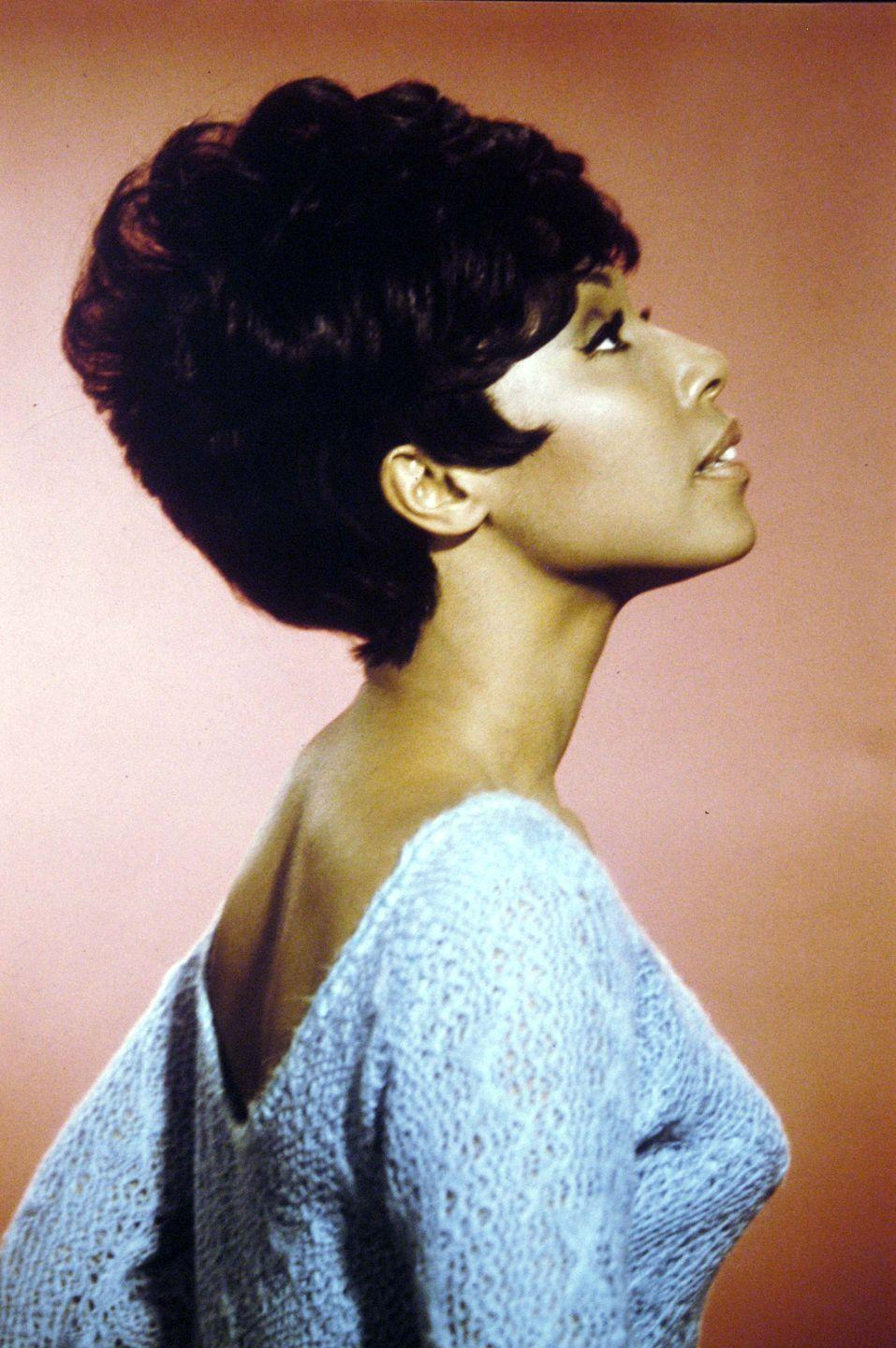 <p>Starring in <em>Julia</em>, a role that made her the first Black actress to have her own TV show, Diahann Carroll helped propel this chic, voluminous style to popularity.</p>
