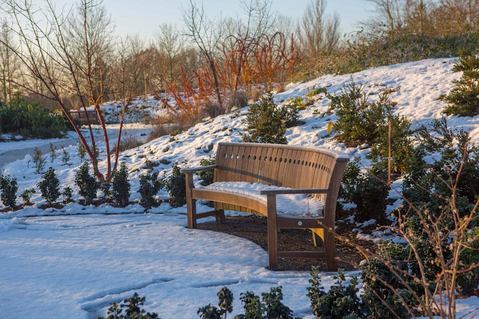 winter garden jobs:  Garden Hyde Hal