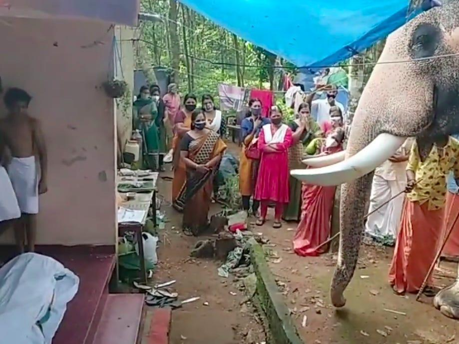 Elephant in Indian village bids farewell to trainer