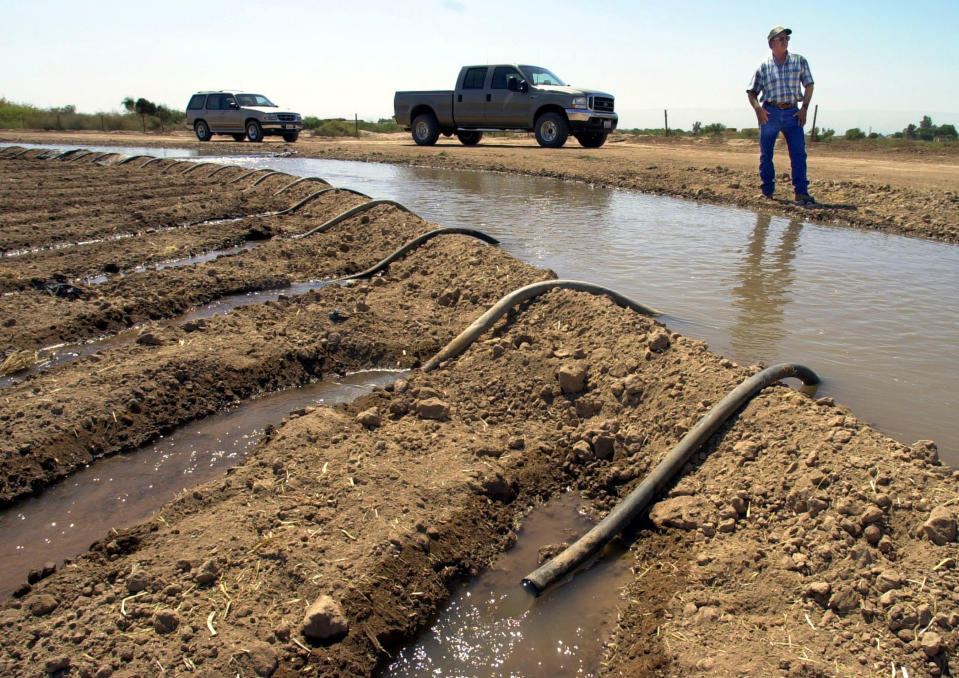 FILE - In this Sept. 3, 2002 file photo, farmer John Hawk looks over his land as his seed onion fields are watered in Holtville, Calif. For the seven states that rely on the Colorado River that carries snowmelt from the Rocky Mountains to the Gulf of California, that means a future with increasingly less water for farms and cities although climate scientists say it's hard to predict how much less. The U.S. Bureau of Reclamation on Thursday, Aug. 15, 2019 will release its projections for next year's supply from Lake Mead, which feeds Nevada, Arizona and California. (AP Photo/Reed Saxon, File)