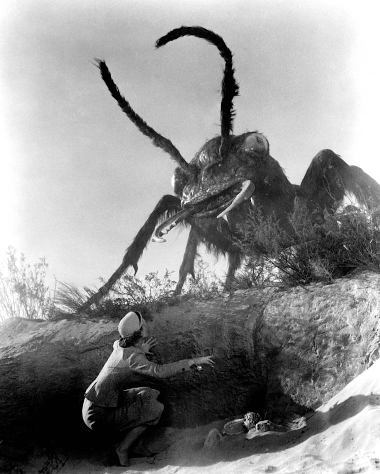 """<a href=""""http://movies.yahoo.com/movie/1800126462/info"""">Them!</a> (1954): Ants -- they're so tiny and harmless, they couldn't do any real damage beyond making a picnic unpleasant, right? Wrong! Sometimes ants turn gigantic and predatory when exposed to nuclear testing in the New Mexico desert. But we don't see the big, angry bugs for a while; instead, """"Them!"""" builds suspense on the premise of a mysterious, unknown menace. A reflection of Cold War terror and panic, this black-and-white science fiction classic was nominated for an Academy Award for its special effects and featured a cast including James Whitmore, James Arness, Fess Parker and Leonard Nimoy. But it was also good, cheesy fun."""
