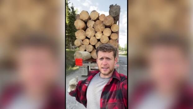 Chace Barber has gained social media fame simply by posting videos of his job driving logging trucks. (chacebarber/TikTok - image credit)