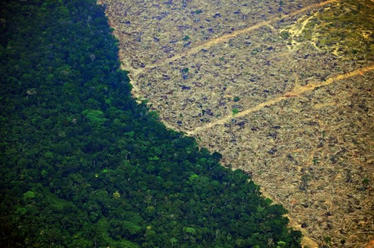 An aerial picture shows a deforested piece of land in the Amazon rainforest near an area affected by fires in the state of Rondonia, in northern Brazil, on August 23, 2019