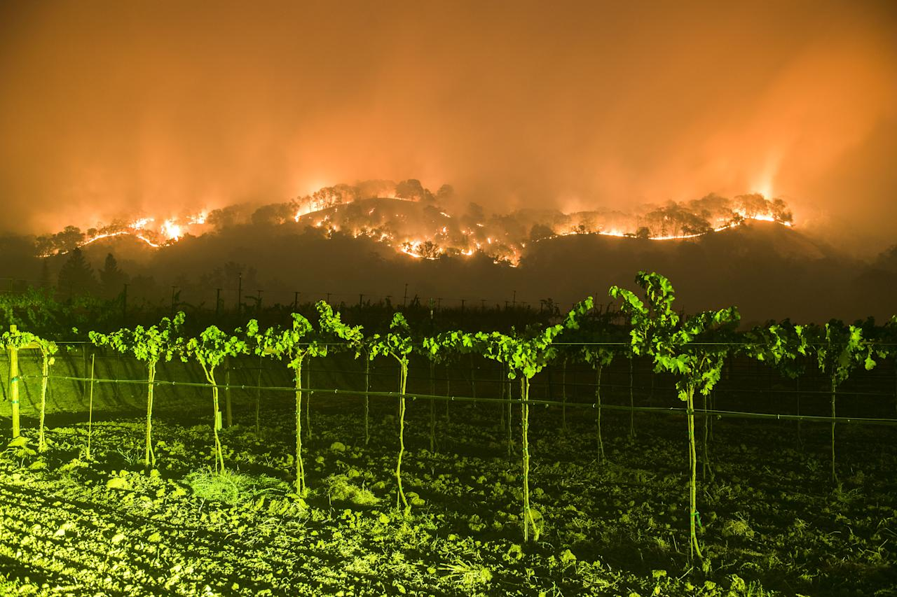 <p>The Atlas Fire burns east of Woodley Canyon Rd near vineyards late Tuesday evening in Napa County, in this long exposure image on Oct. 10, 2017. (Photo: Stuart Palley via ZUMA Wire) </p>