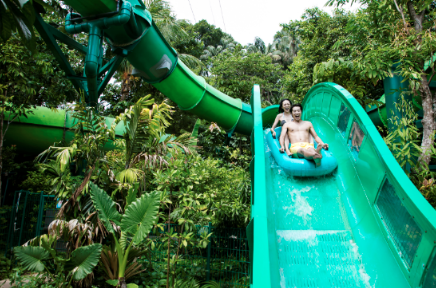 Making a splash! Ride the Riptide Rocket's twists and turns through lush tropical gardens at Resorts World Sentosa