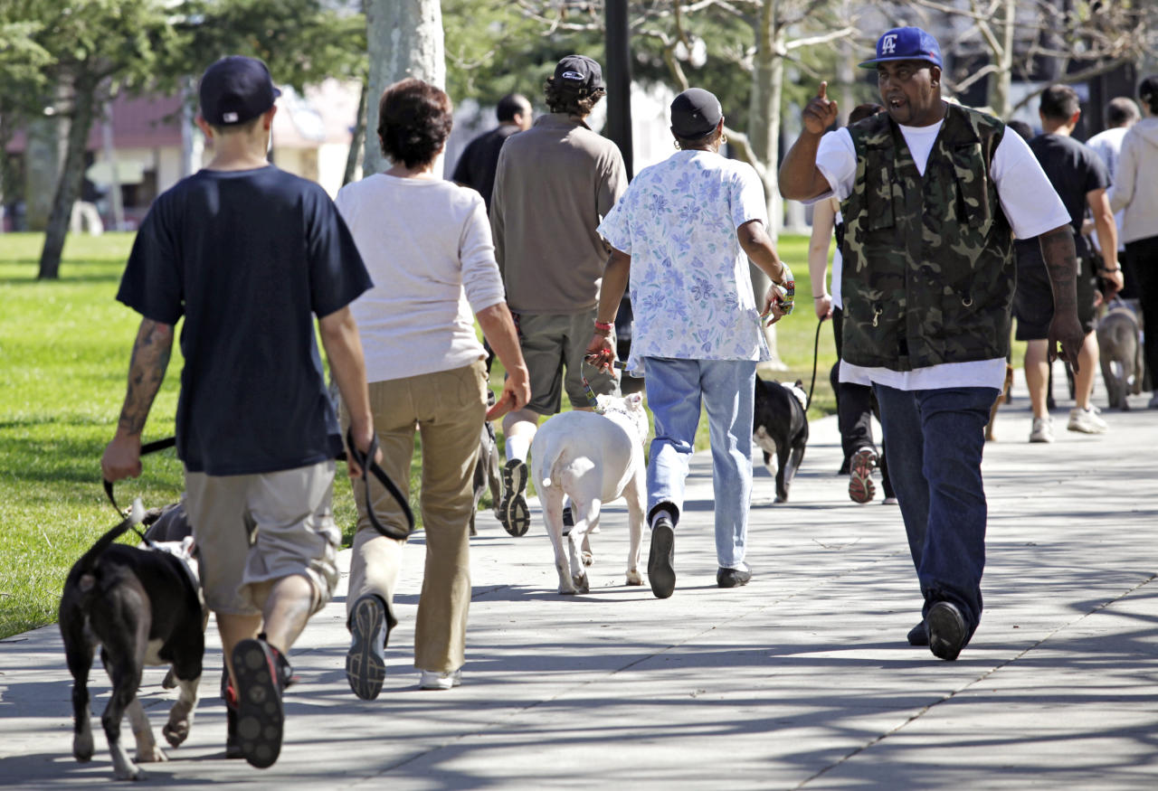 """In this Sunday, March 3, 2012 photo, trainer Cornelius """"Dog Man"""" Austin leads a training and obedience class with students and volunteers for pit bulls at the Los Angeles Coliseum in downtown Los Angeles. (AP Photo/Richard Vogel)"""