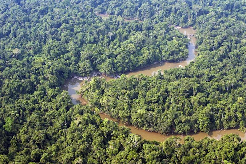 Aerial view of the Jamanxim river which crosses the 1.3 million hectares of the National Forest reserve, near Novo Progresso in the state of Para, northern Brazil, on November 28, 2009 (AFP Photo/Antonio Scorza)
