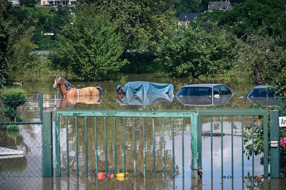 Cars and a figure of a horse are submerged by flooding in Hattingen, Germany on Thursday.