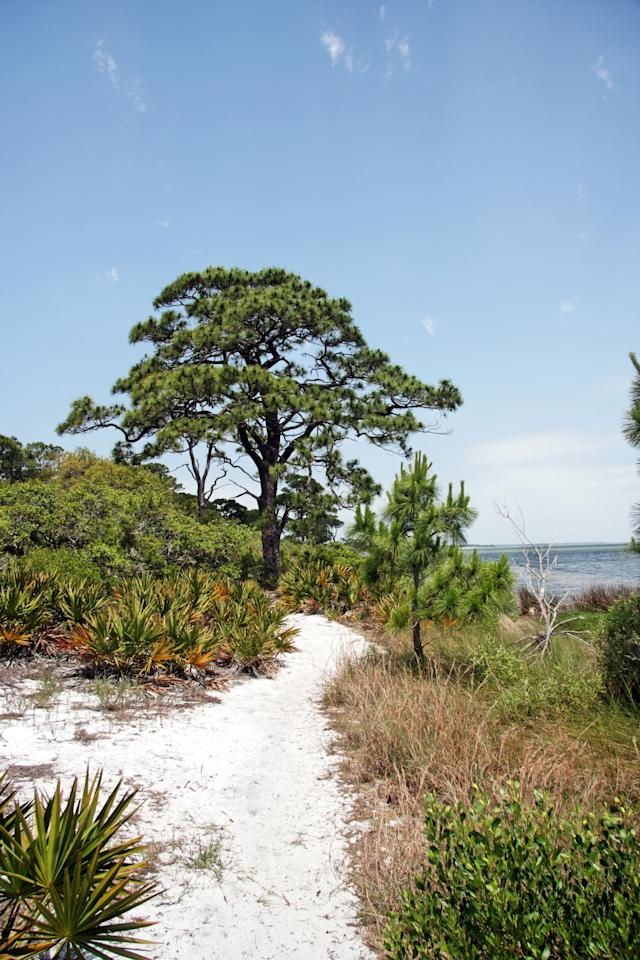 10 best places to camp in florida for 10 best cities in florida