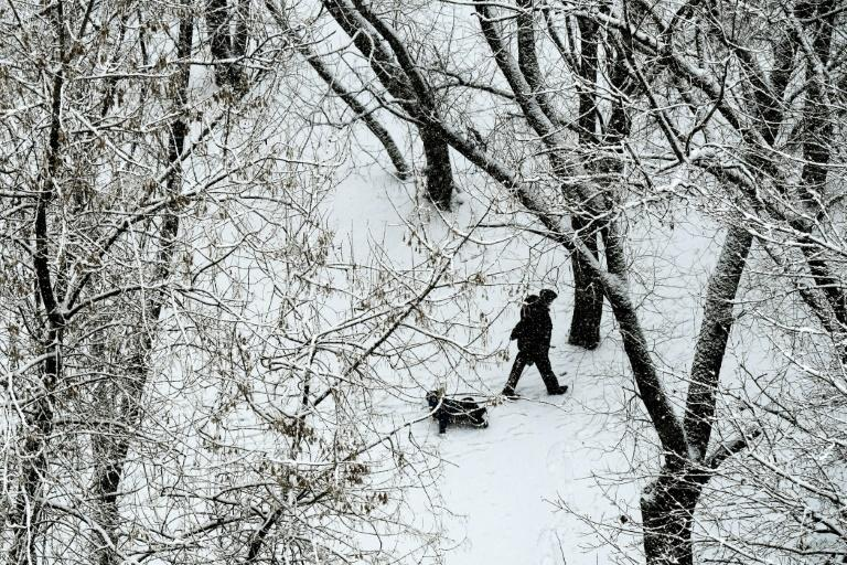 """Snow problem: Russia will also look at """"positive"""" effects of climate change such as are decreased energy use in cold regions, expanding agricultural areas and navigational opportunities in Arctic waters"""
