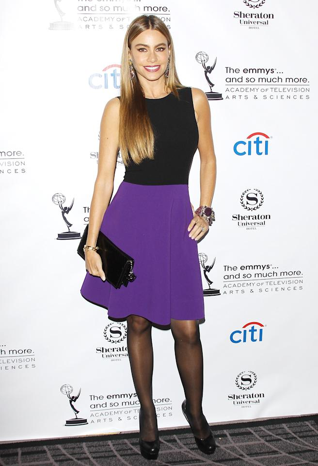 <b>Who:</b> Sofia Vergara<br /><br /><b>Wearing:</b> Michael Kors dress, Alice + Olivia pumps<br /><br /><b>Where:</b> Television Academy cocktail reception in Los Angeles
