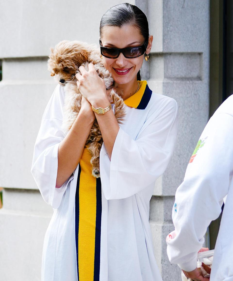 <p>Bella Hadid totes an adorable pooch on Oct. 8 while out in N.Y.C.</p>