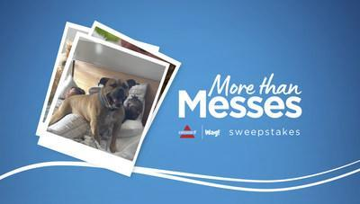 Enter the More Than Messes Sweepstakes before July 27, 2021.