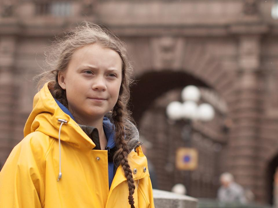 Nathan Grossman: 'Greta Thunberg continues to bang her head against this cement wall of politicians' (Dogwoof)