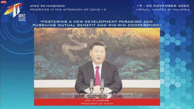 Leaders of APEC economies and business executives speak at the CEO Dialogue forum via video link ahead of the leaders' summit