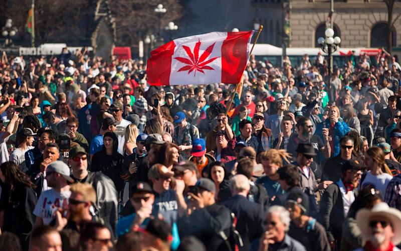 Canada introduces marijuana legislation - AFP