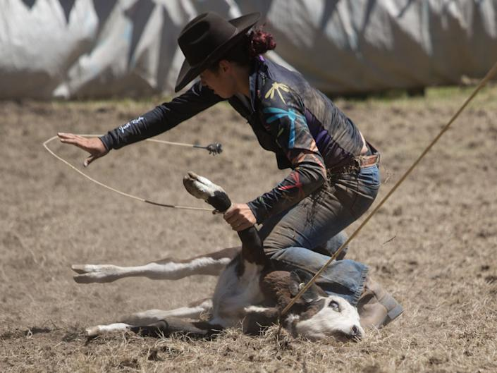 Anti Rodeo Action NZ