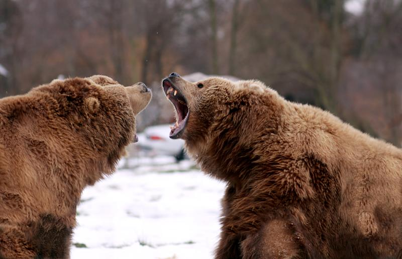 Bitcoin Price: BitMEX CEO Doubles Down on Bear Call, Says BTC Could