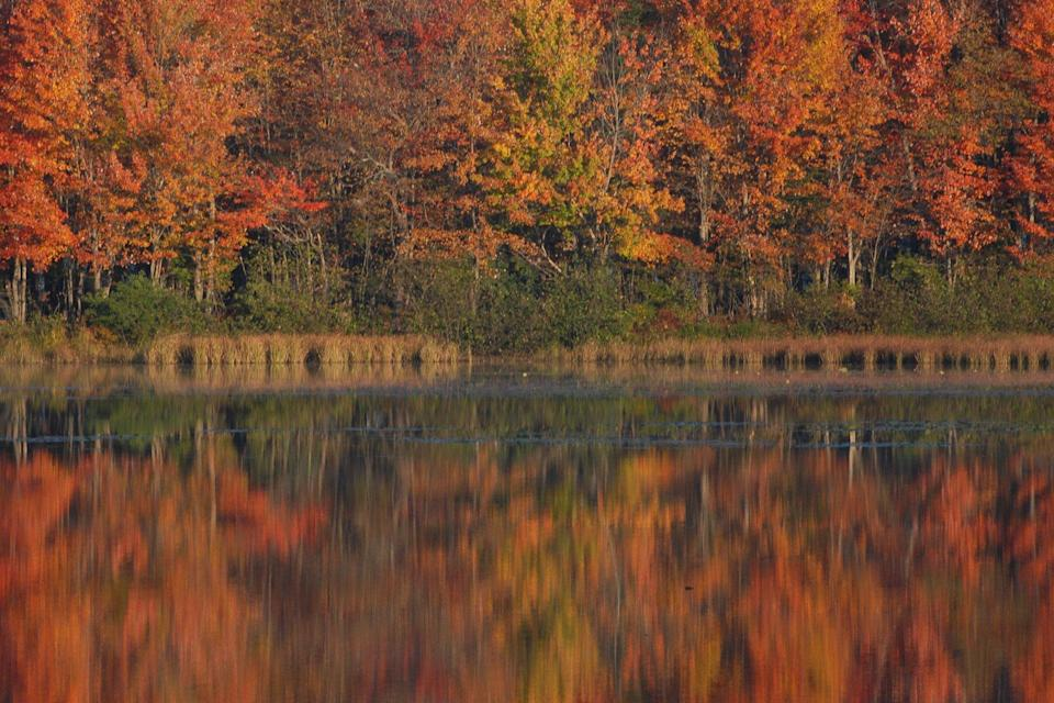 Images of some of the lakes and fall colors and Cooperstown, NY area