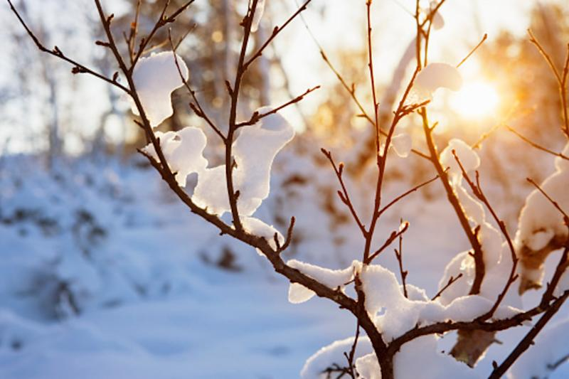It's December: Welcome to meteorological winter!