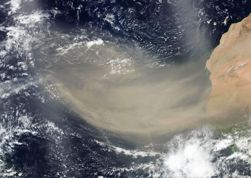 Are more 'Godzilla' dust storms on the horizon?