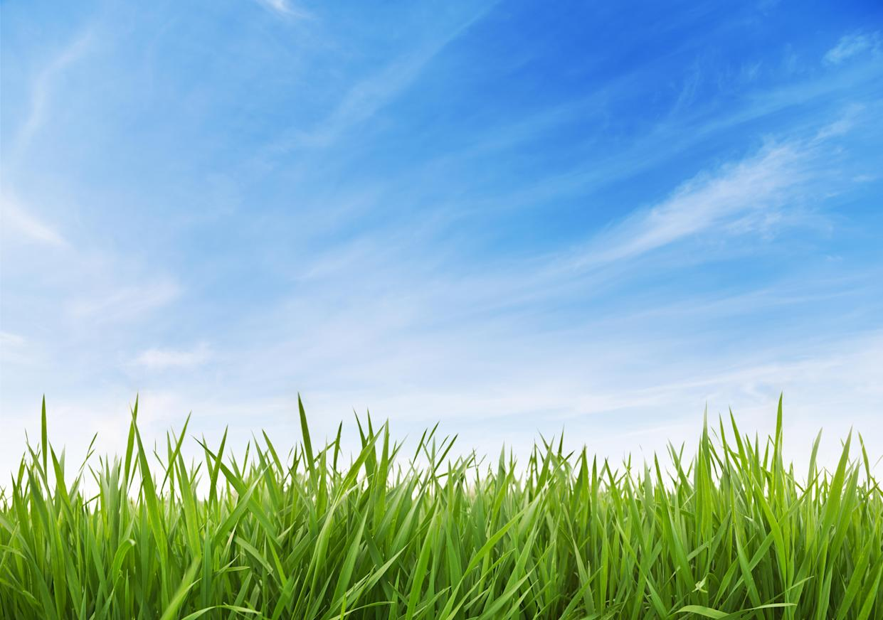 Show your lawn some love now and watch it flourish come spring! (Photo: Getty)