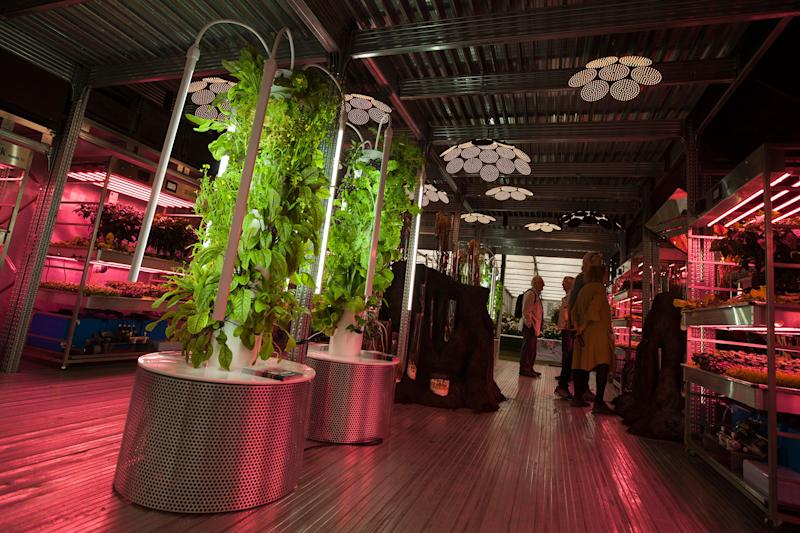 """Tom Dixon's """"hyperreal"""" garden, part of his two-story installation, Gardening Will Save the World, within Chelsea's Great Pavilion."""