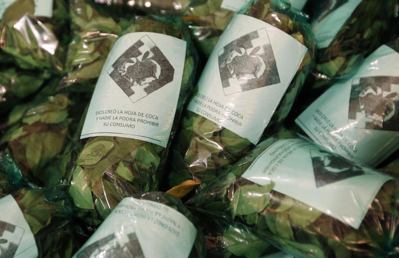 "Gift bags of coca leaves with packaging that reads in Spanish ""God created coca leaves and no one will be able to prohibit its consumption"" lay at a coca vendor's stall, to be handed out to people attending an upcoming event celebrating traditional coca chewing, at a legal coca leaf market in La Paz, Bolivia, Friday, Jan. 11, 2013. President Evo Morales' global crusade to decriminalize the coca leaf, launched in 2006 after the coca growers' union leader was first elected president of Bolivia, has finally attained a partial, if largely, symbolic victory. A year ago, Bolivia temporarily withdrew from the 1961 U.N. convention on narcotic drugs because it classifies coca leaf, the raw material of cocaine, as an illicit drug. It has now rejoined, with one important caveat: The centuries-old Andean practice of chewing or otherwise ingesting coca leaves, a mild stimulant in its natural form, will now be universally recognized as legal within Bolivia. (AP Photo/Juan Karita)"