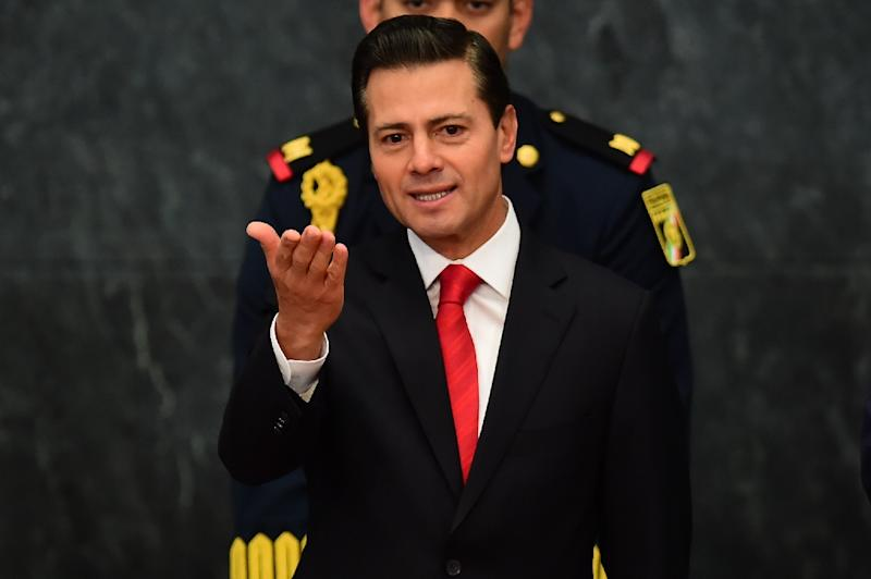 "Mexican President Enrique Pena Nieto vowed to be firm in his defense of Mexico's ""dignity and independence"" from the US government (AFP Photo/Ronaldo SCHEMIDT)"