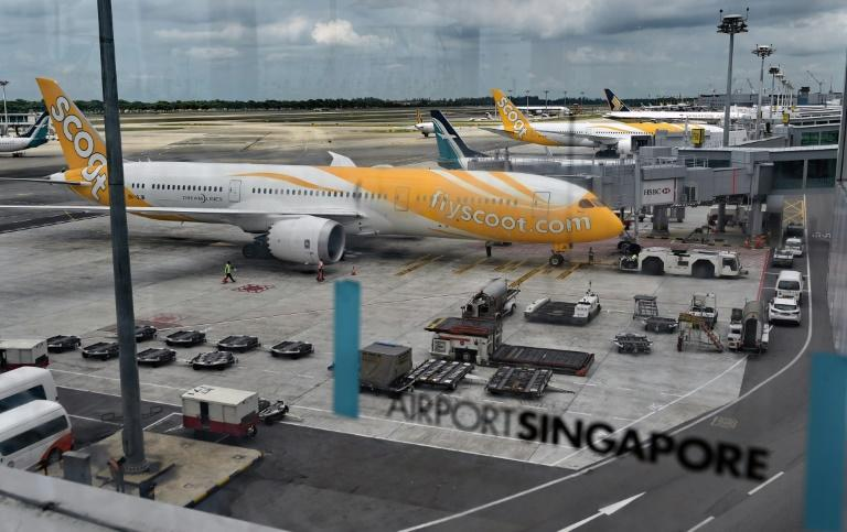A Boeing 787 Dreamliner aircraft operated by long-haul budget carrier Scoot, a subsidiary of Singapore Airlines, is parked on the apron at the Changi international airport terminal in Singapore on May 28, 2015