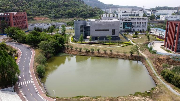 The P4 laboratory (C) at the Wuhan Institute of Virology in Wuhan, China one of just among a handful of labs worldwide cleared to handle dangerous viruses that pose a high risk of person-to-person transmission