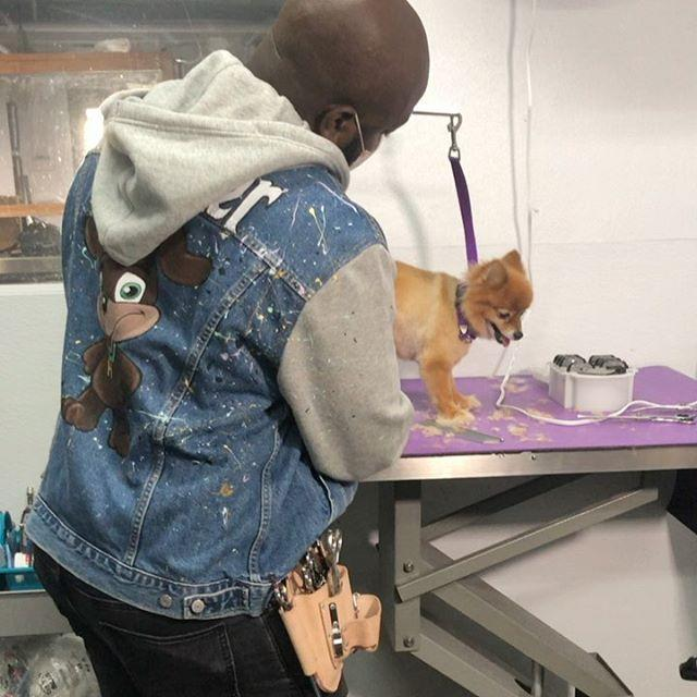 "<p>Hit up Harlem Doggie Day Spa, if your pet needs grooming. Yes, it's based in NYC, but the company is planning a pandemic pup relief tour that you can help support below.</p><p><a class=""link rapid-noclick-resp"" href=""https://www.gofundme.com/f/the-pandemic-pup-relief-tour"" rel=""nofollow noopener"" target=""_blank"" data-ylk=""slk:Support Now"">Support Now</a></p><p><a href=""https://www.instagram.com/p/CEUdNAfFaqW/?utm_source=ig_embed&utm_campaign=loading"" rel=""nofollow noopener"" target=""_blank"" data-ylk=""slk:See the original post on Instagram"" class=""link rapid-noclick-resp"">See the original post on Instagram</a></p>"