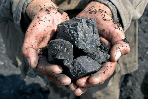 A person holding lumps of coal in their cupped hands.