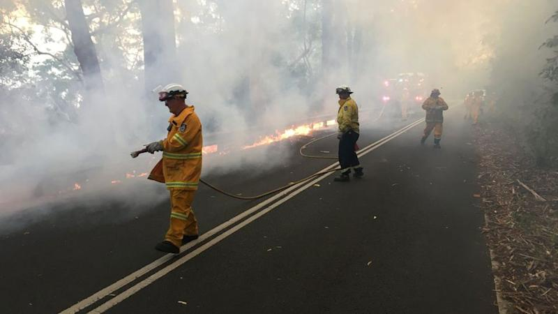 Firefighters have started back burning in the Royal National Park in order to control the bushfires burning there.
