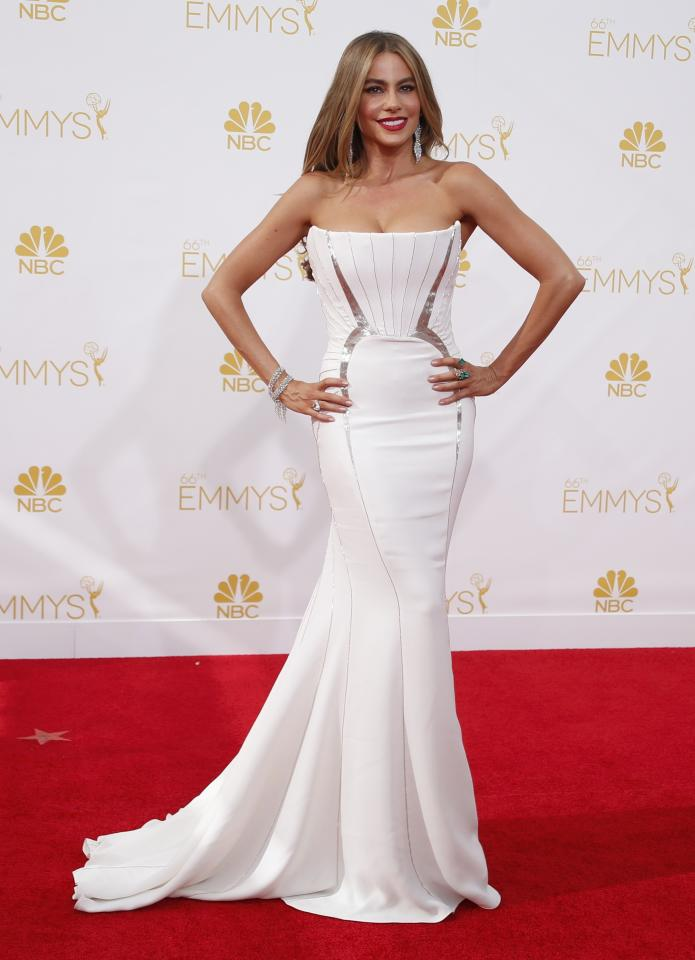 """Actress Sofia Vergara from the ABC sitcom """"Modern Family"""" arrives at the 66th Primetime Emmy Awards in Los Angeles, California August 25, 2014. REUTERS/Lucy Nicholson (UNITED STATES -Tags: ENTERTAINMENT)(EMMYS-ARRIVALS)"""