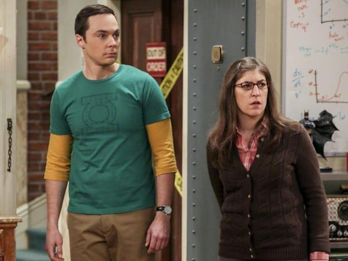 amy sheldon big bang theory