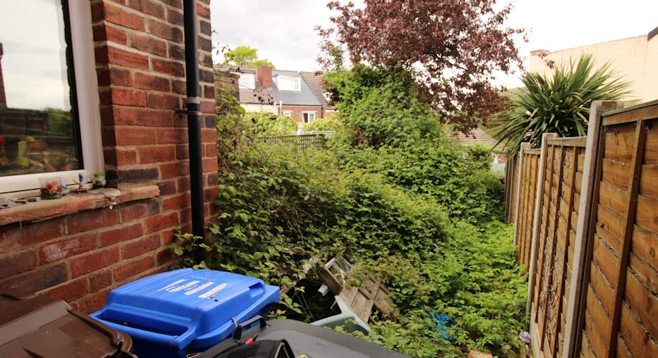 The garden is completely overgrown (SWNS)