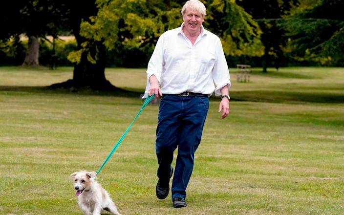 The Prime Minister walking his dog at Chequers - Andrew Parsons/No 10 Downing Street