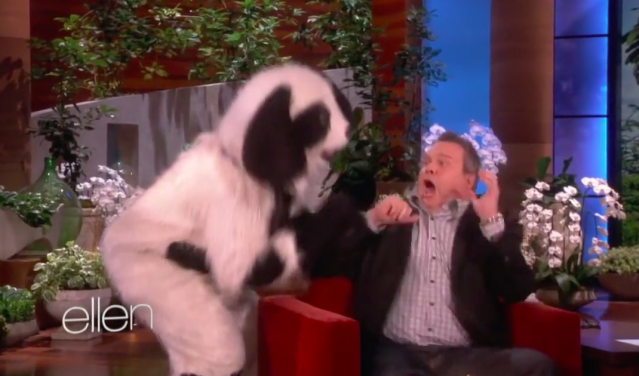 Eric Stonestreet gets scared on a previous visit to <em>Ellen</em>. (Photo: NBC)