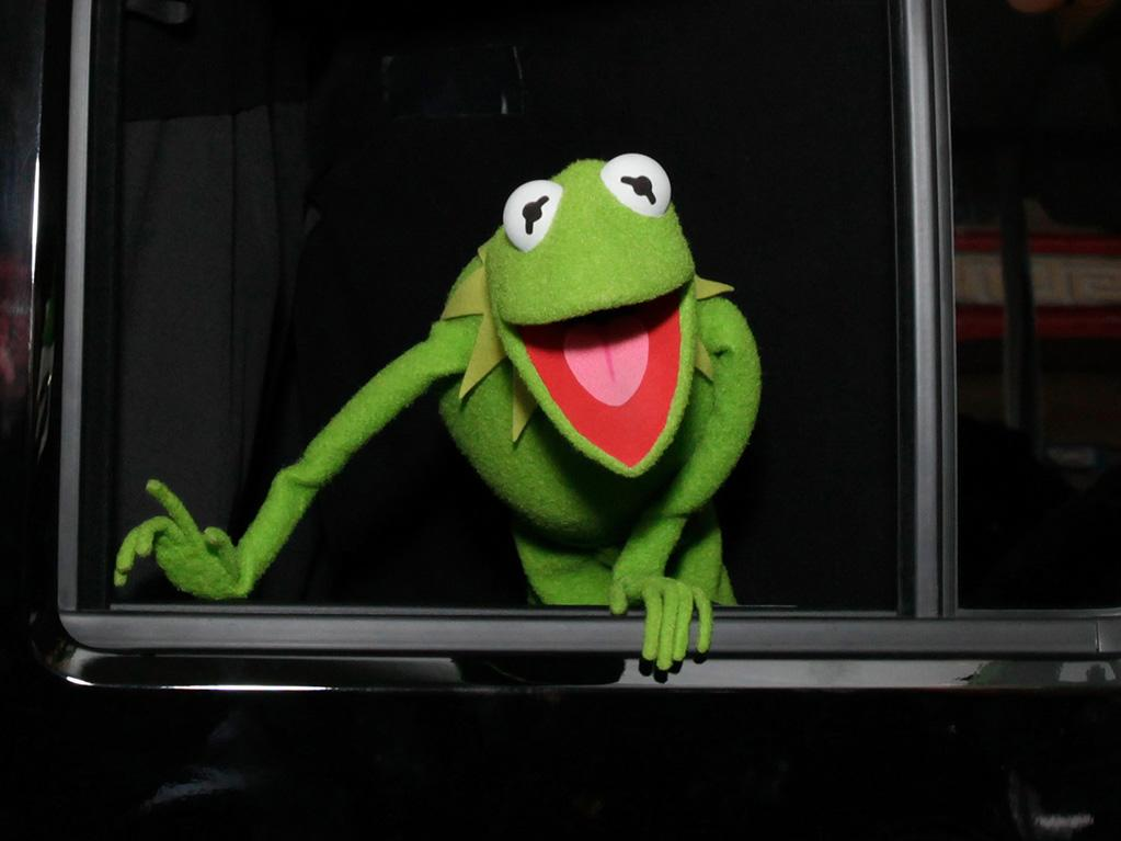 """<a href=""""http://movies.yahoo.com/movie/contributor/1800019177"""">Kermit the Frog</a> at the Los Angeles premiere of <a href=""""http://movies.yahoo.com/movie/1810188975/info"""">The Muppets</a> on November 12, 2011."""