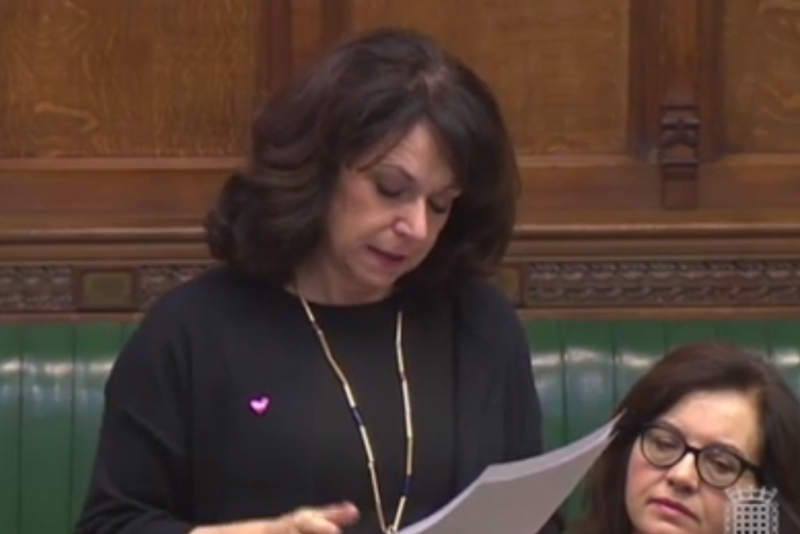 Speech: Labour's Julie Elliott made an emptional speech about organ donation and talked about her daughter becoming sick