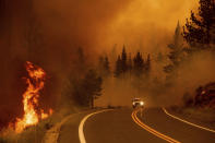 Flames lick at a roadside as the Tamarack Fire burns in the Markleeville community of Alpine County, Calif., on Saturday, July 17, 2021. (AP Photo/Noah Berger)