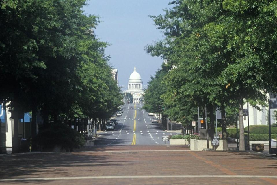 Tree line leading to the State Capitol of Arkansas, Little Rock