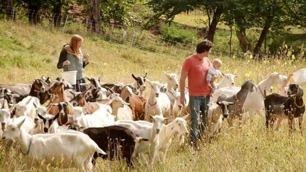 PHOTO: Louisa Conrad and Lucas Farrell stand among their herd of goats at the Big Picture Farm in Townshend, Vt., September 2020. (ABC News)