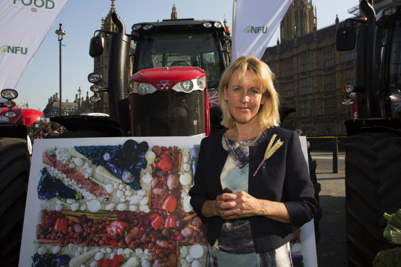 NFU Vice President Minette Batters at the National Farmers Union (NFU) took machinery, produce, farmers and staff to Westminster to encourage Members of Parliament to back British farming, post Brexit on 14th September 2016 in London, United Kingdom. MPs were encouraged to sign the NFUs pledge and wear a British wheat and wool pin badge to show their support. (photo by Mike Kemp/In Pictures via Getty Images Images)